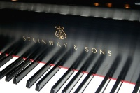 800px-Steinway_&_Sons,_keys_and_modern_logo